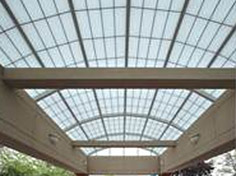 Translucent Panel Skylights and Wal